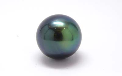 クロチョウパール(Tahitian Cultured Pearl)