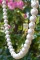 「真珠に深呼吸」